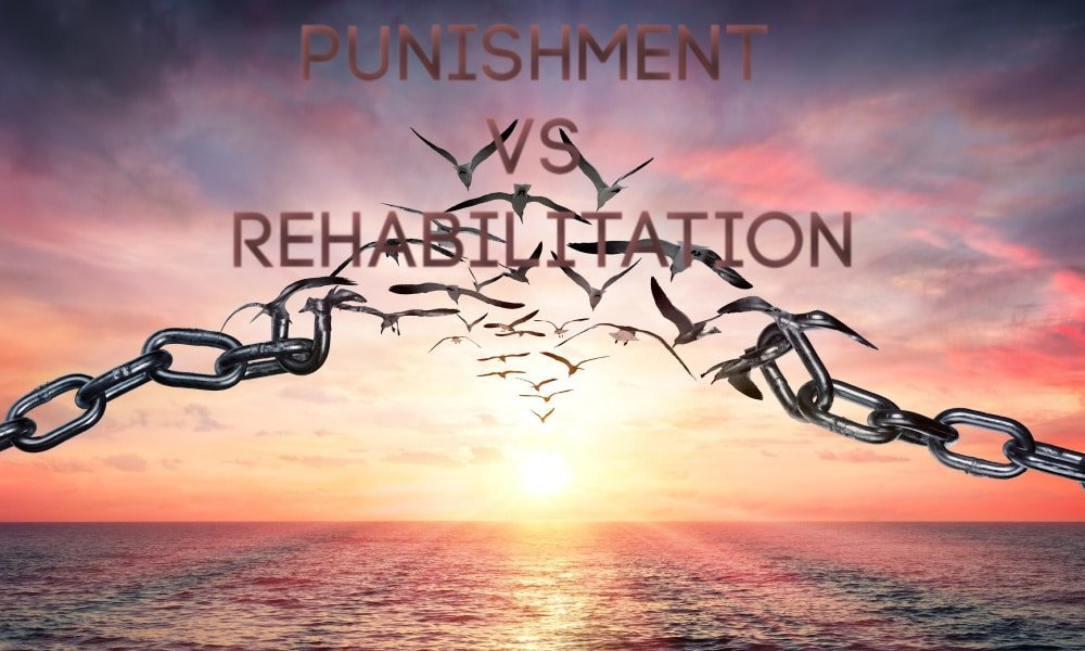Punishment VS Rehabilitation In The Criminal Justice System